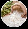Gạo, Thực phẩm khác